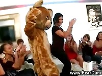 Bear mascot dry humping hot college girls